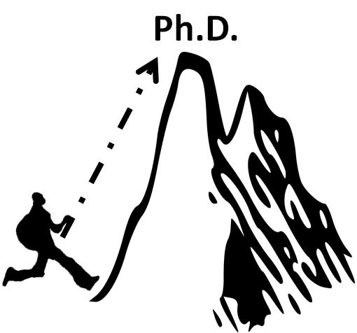 Why donig a PhD