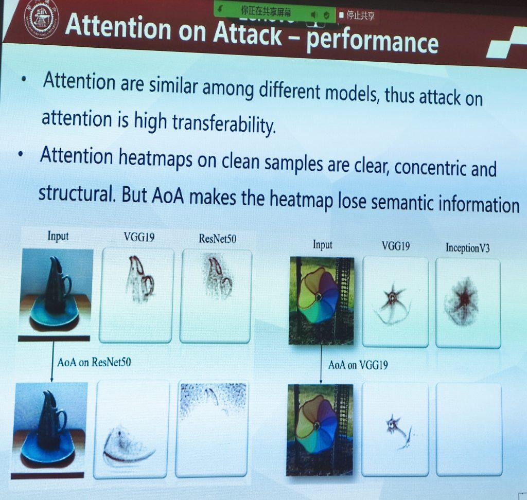 DAmageNet attention attack