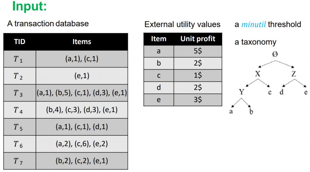 transaction database with taxonomy