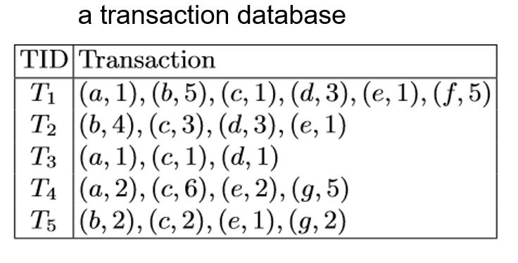 transaction database for high utility mining